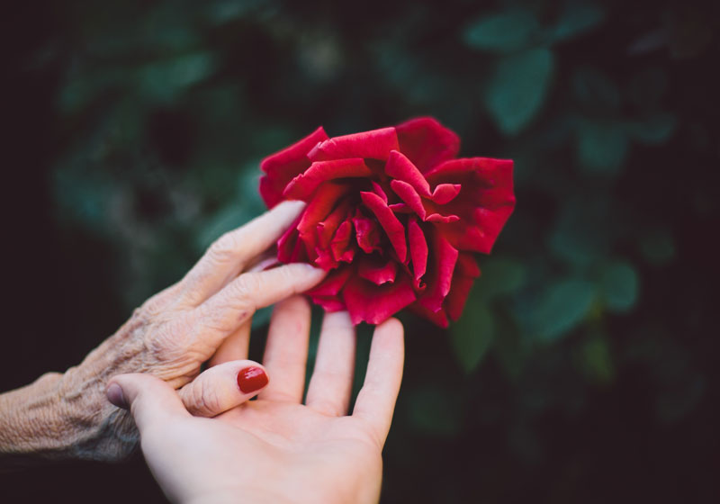 End-of-life care expert Dr. Marcia L. Howland shares insight concerning the five spiritual signs that your loved one may exhibit when nearing death.